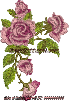 mẫu thêu hoa hồng lên áo